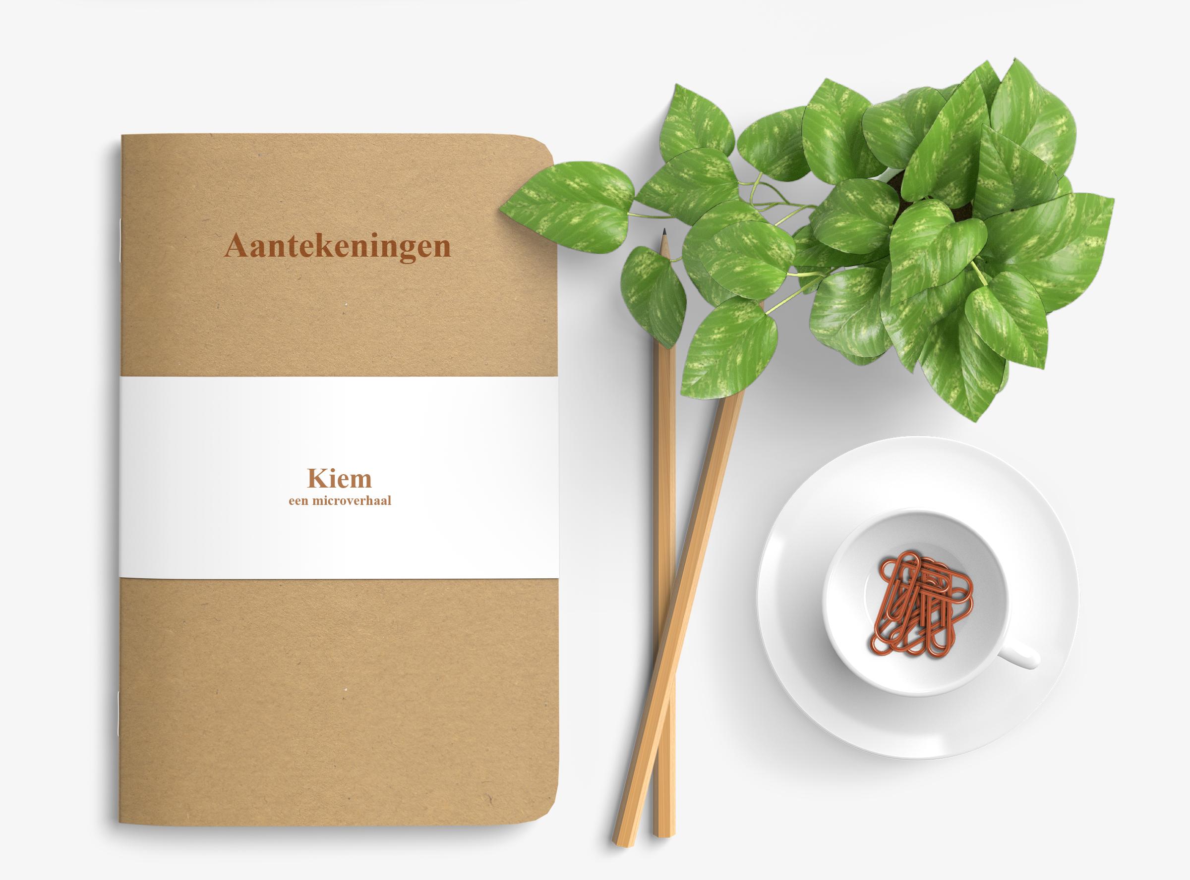 Kiem: Een microverhaal - Korte verhalen - EdivaniaLopes.nl